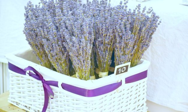 Lift Your Spirits and Soothe Anxiety in Minutes with Lavender Oil
