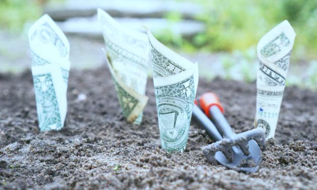 13 Guiding Principles about Money