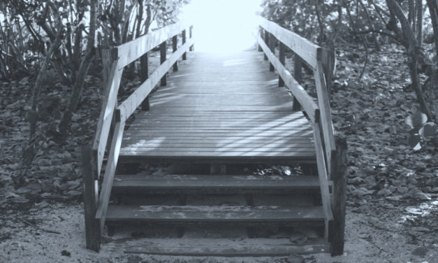 Learning to Bridge Human Difference 101 – Part 2