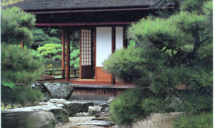 What Japanese Architecture Can Teach You About Life
