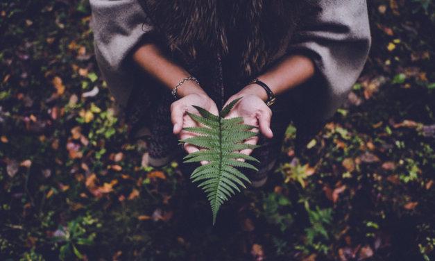 3 Rituals to Honor and Celebrate Autumn Equinox
