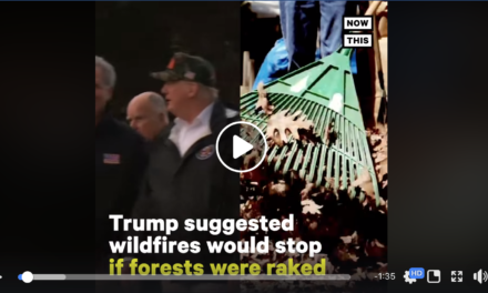 Trump on 'Preventing' Wildfires: Rake the Floors
