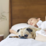 HOW TO IMPROVE YOUR SLEEP QUALITY…AND BOOST YOUR SUCCESS