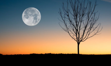 Three Simple Rituals for the Winter Solstice Full Moon