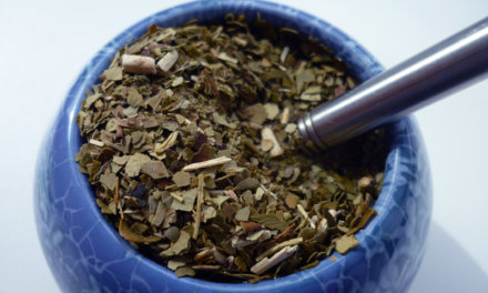 Why Yerba Mate Might Become Your New Best Friend