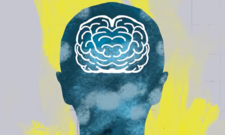Vox:  How your brain invents morality