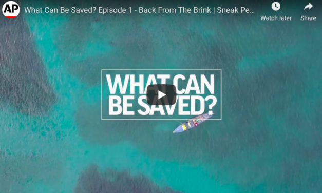 Episode 1 – Back From The Brink   What Can Be Saved?   AP