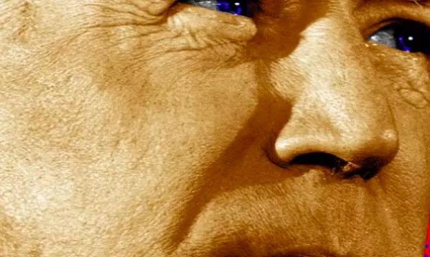 The Week:  Joe Biden- The only conservative running for president