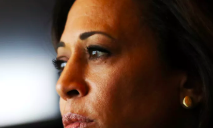 Vox: Kamala Harris and the fallibility of identity politics