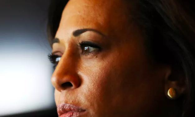 Vox: Kamala Harris and the fallibility of identity politics